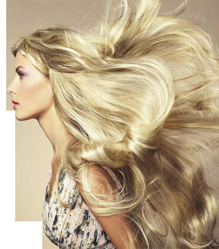 Hair Salon In Chatham Nj Salon Athena Organic Hair Care